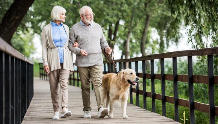 Senior-Friendly Chicago: 10 Ideas to Help Active Seniors Enjoy Chicagoland
