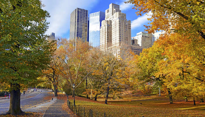Fall & Winter Day Trips Near Chicago for Seniors and Caregivers